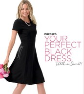 The LBD with shaping- and a zipper!