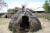 What types of houses did the Apache live in?