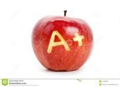 Higher Grades