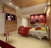 Luxury Rehab housing