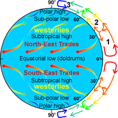 Global Winds and Local winds diagram