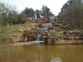 The Wichita Falls