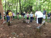 Low Ropes Course
