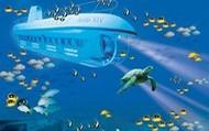 The Whole Submarine