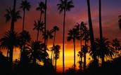 California - Transform Boundary