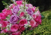 Send Flowers to Your Near Ones in One Click