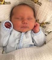 Mazel Tov to Adam Feigin on the Birth of a Baby Boy!