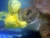 Eating plastic underwater