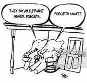 Longe Term Memory