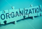 2-Organization