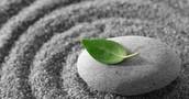 Mindfulness Enhanced Strengthening Families Program