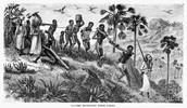 Start of slavery Trade