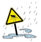 Dengue, another climate alert