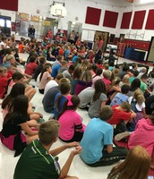Wildcat Assembly