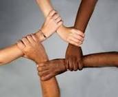 Diversity of Ethnicity