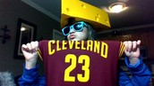 I am wearing a LeBron jersey, a cheesehat, and sunglasses