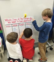 What Zones Should We Learn About First?