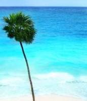 Mexico people swim here