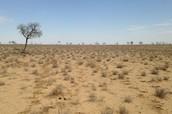Australian droughts