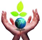 Medio Ambiente y Poli'tica Territorial