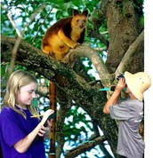"""I have great data on this tree kangaroo!"""