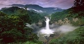 Water Fall of the amazon rain forest