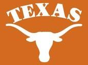 The University of Texas- Austin