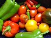 Healthy vegetables!