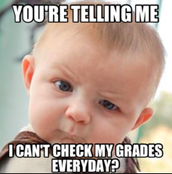 Parents: How to Check Grades