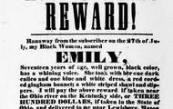 Report runaway slaves