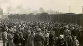People as they are going in to Aushwitz