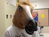 Gotta have a horse mask!