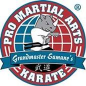 Pro Martial Arts at DCSS