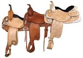 saddle drawing