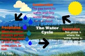 4th grade Water Cycle