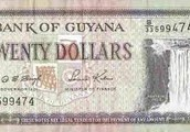 Currency of Guyana