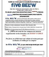 Five Below Flyer Spanish