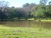 Botanical Garden and Zoo
