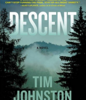 Descent by Tim Johnston (F)