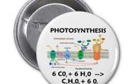 photosynthesis formula