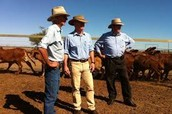 Graziers at Lake Eyre