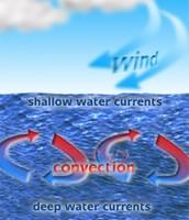 Oceans Convection