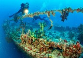 World's largest artificial reef