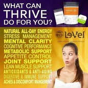 The THRIVE Experience by Le-Vel