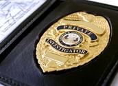 Rank 2: Private detective and investigators