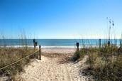 Do you like the beach? If so you will like Edisto Beach.