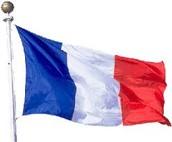 Flag of french revolution