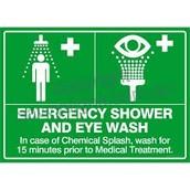 Eye wash safety shower