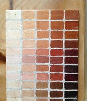 Values of Skin Pigments Adding White or Darker Browns