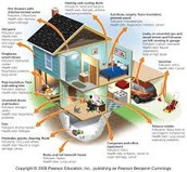 More Causes of Indoor Air Pollution